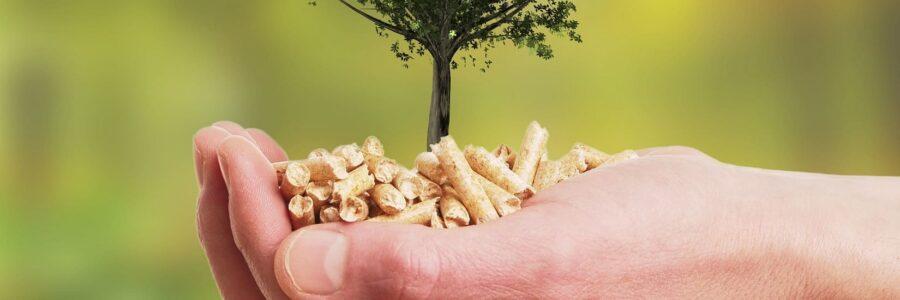 Umweltfreundlichkeit